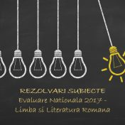 rezolvari subiecte evaluare nationala 2017 romana