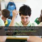 subiecte-simulare-evaluare-nationala-2019-proba-romana-clasa-7